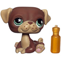 �������� Littlest Pet Shop -